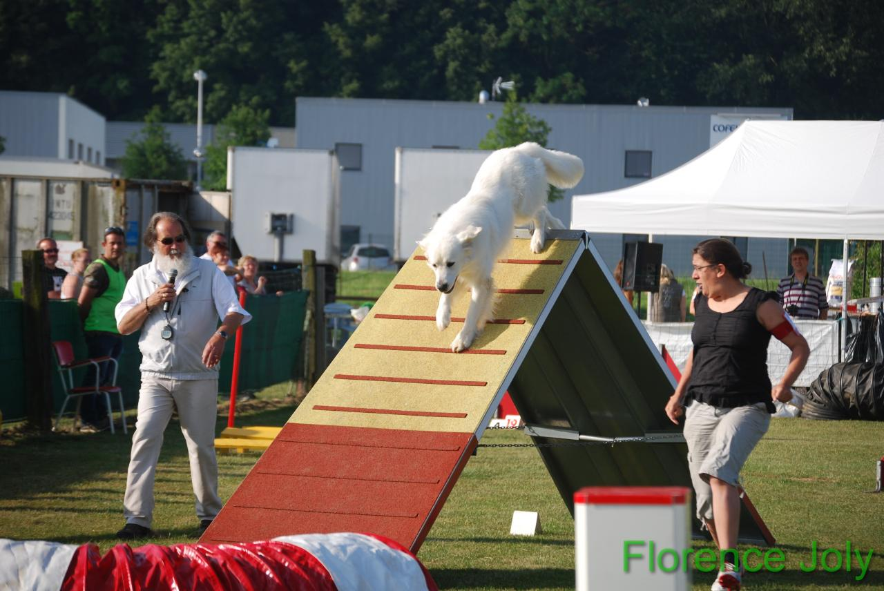 concours clea 2014 (154)