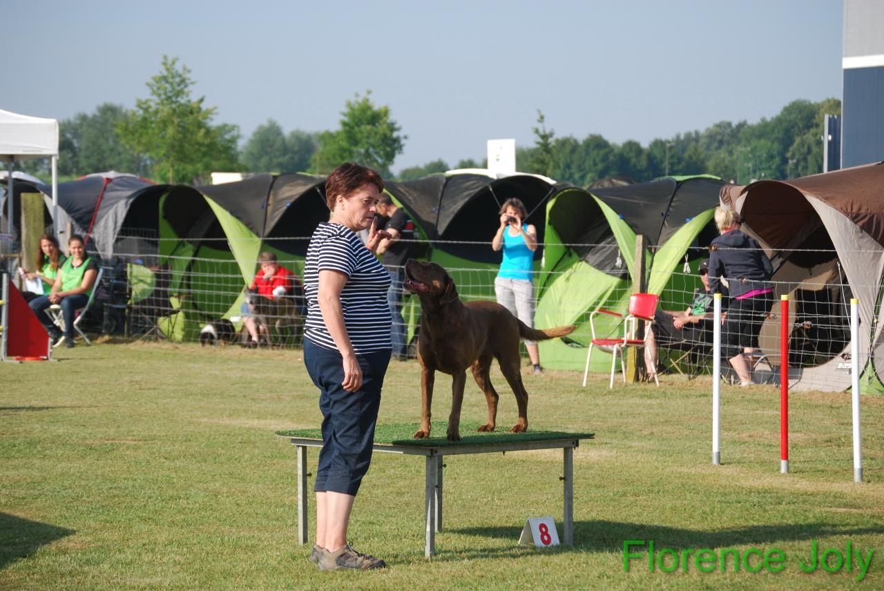 concours clea 2014 (176)