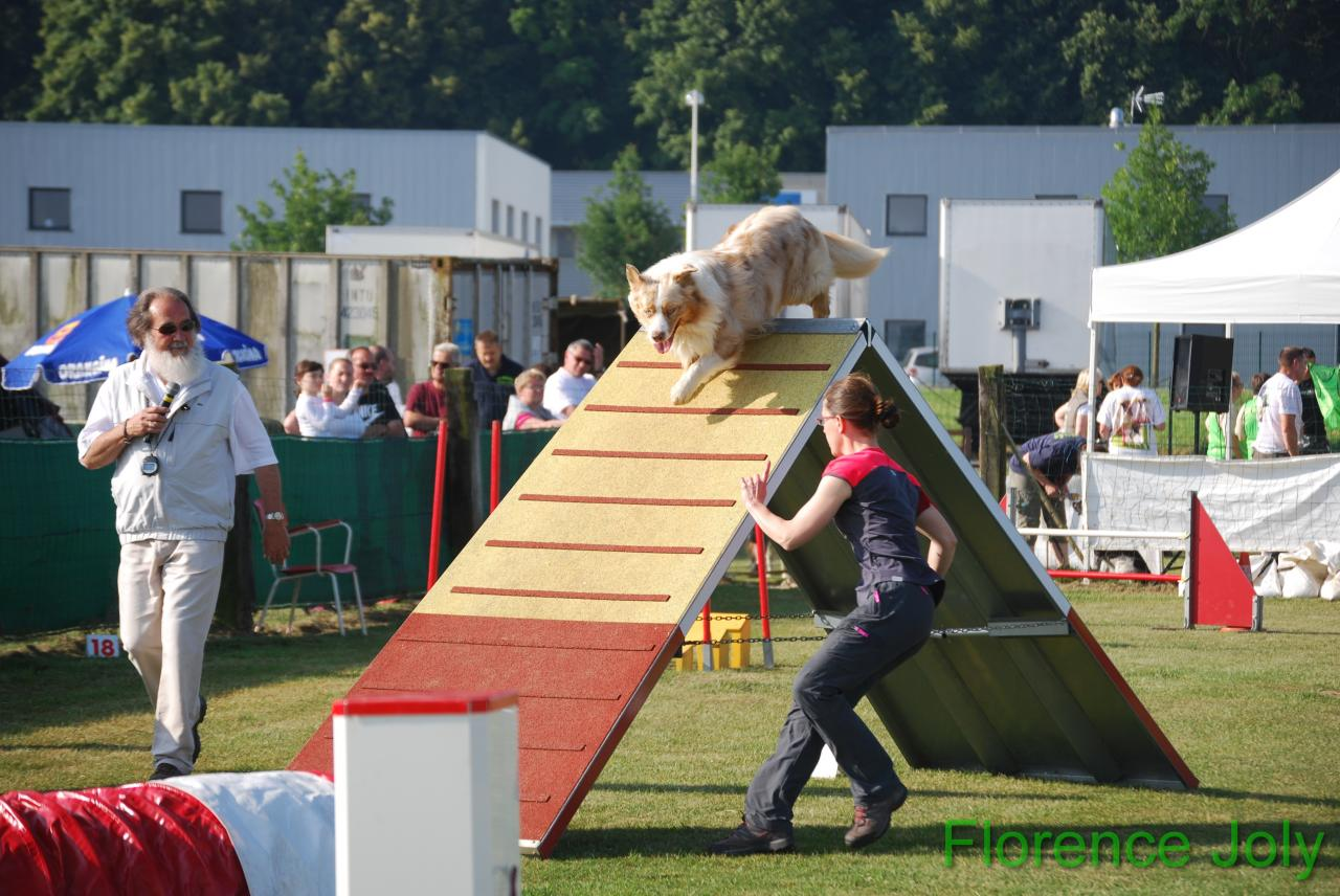 concours clea 2014 (185)