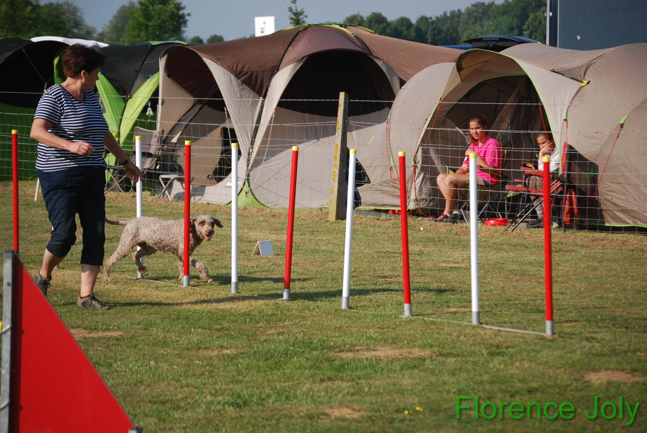 concours clea 2014 (214)