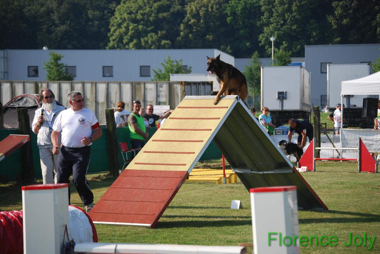 concours clea 2014 (231)