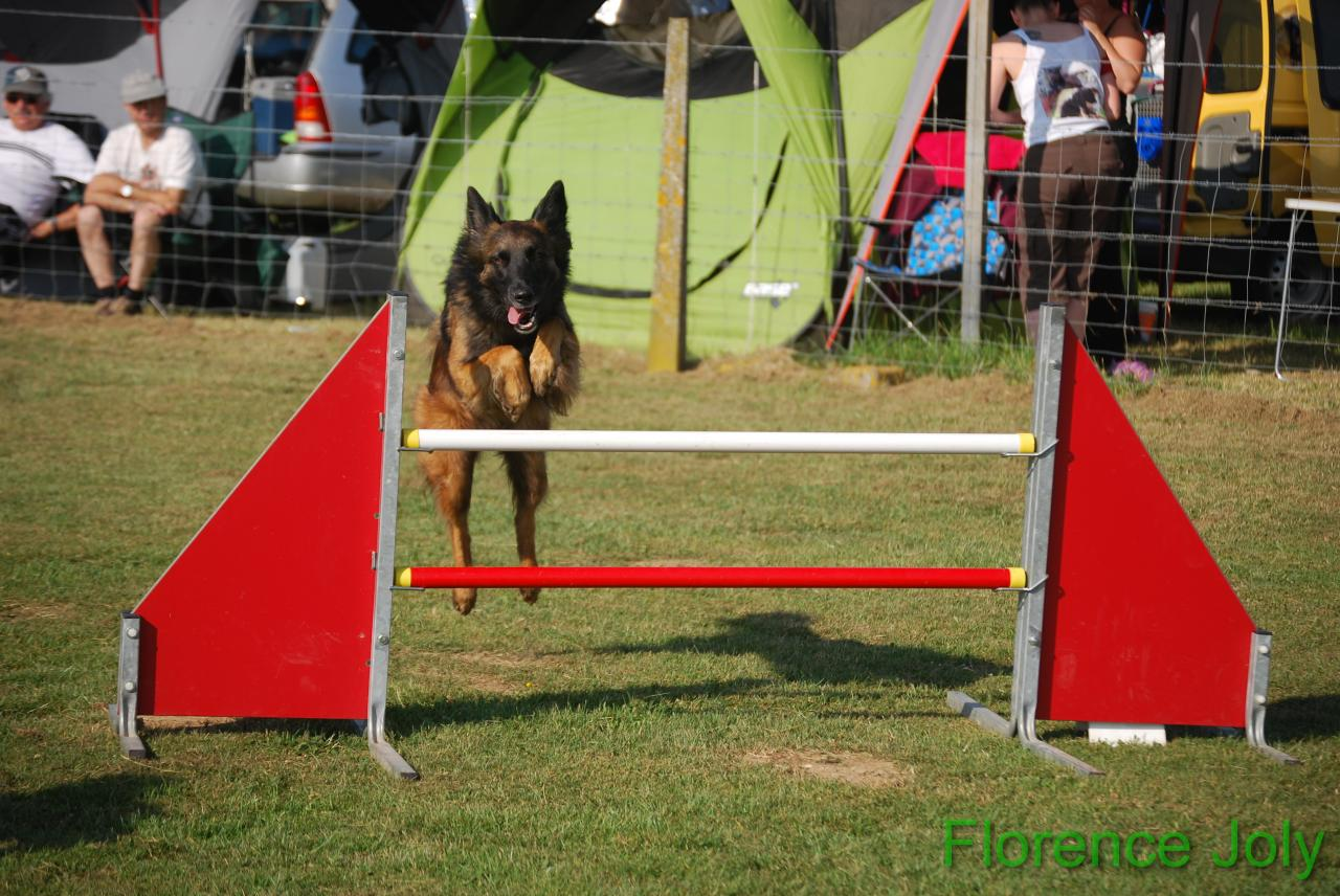 concours clea 2014 (236)