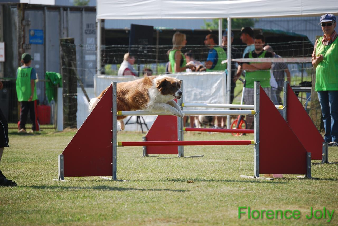 concours clea 2014 (268)