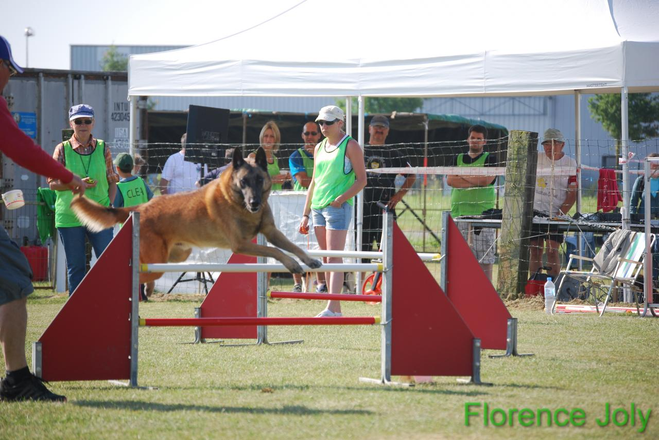 concours clea 2014 (279)