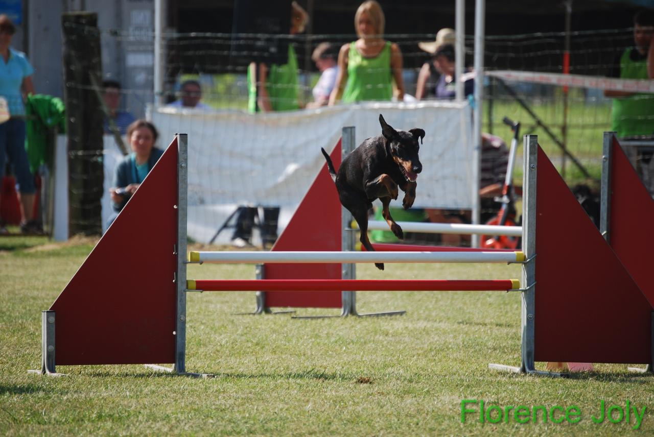 concours clea 2014 (288)