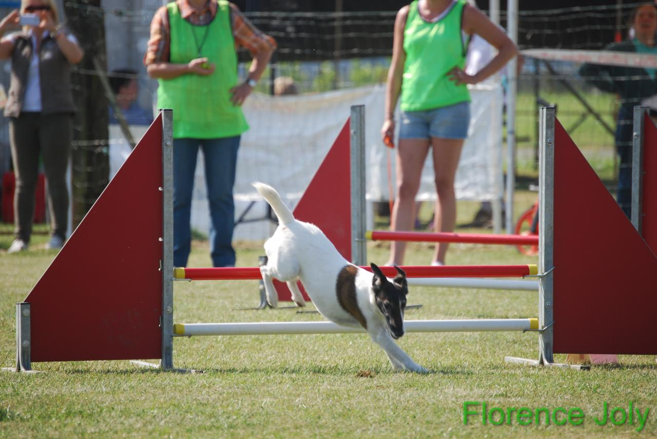 concours clea 2014 (308)