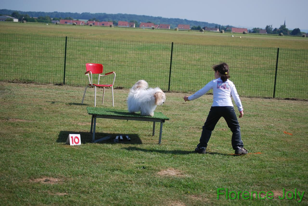 concours clea 2014 (326)