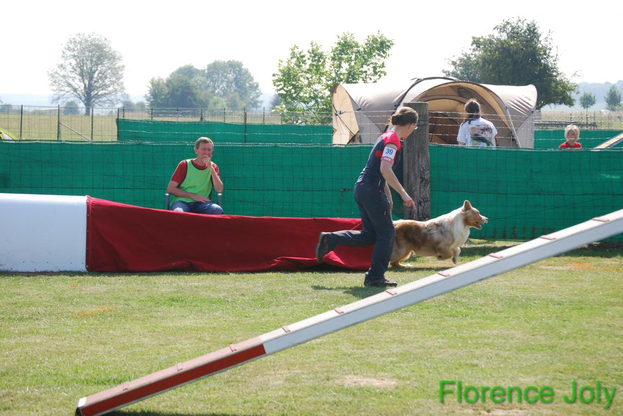 concours clea 2014 (332)