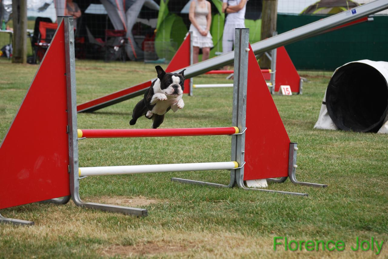 concours clea 2014 (374)