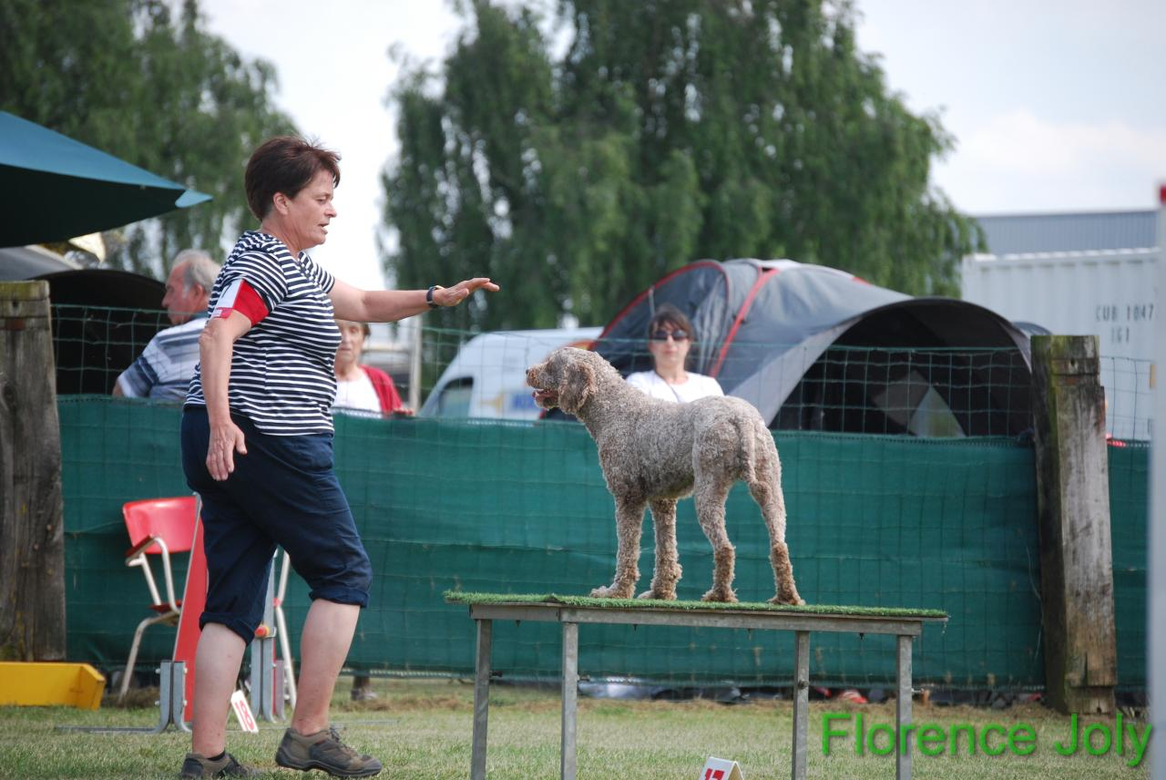 concours clea 2014 (526)