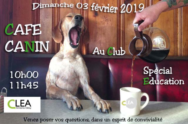 Affiche date cafe canin