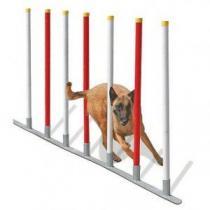 agres-agility-slalom-chien-1328799324-2.jpg