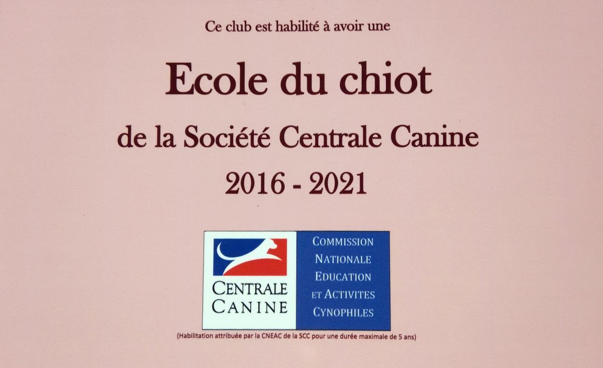 Dsc 0293